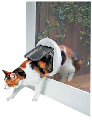 Cat Flap Fitter